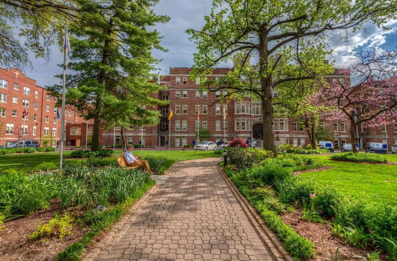 Webster university ( США )