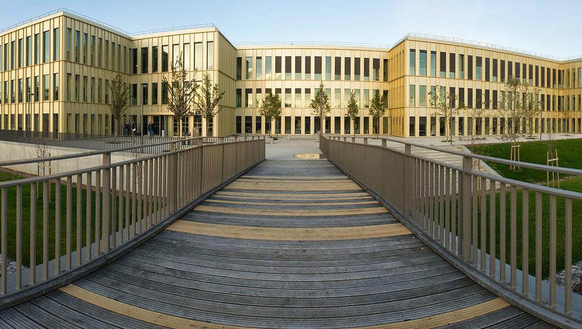 ლონგ აილენდის უნივერსიტეტი